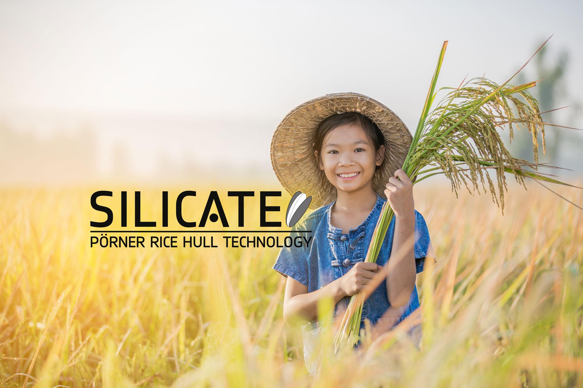 Girl in rice field